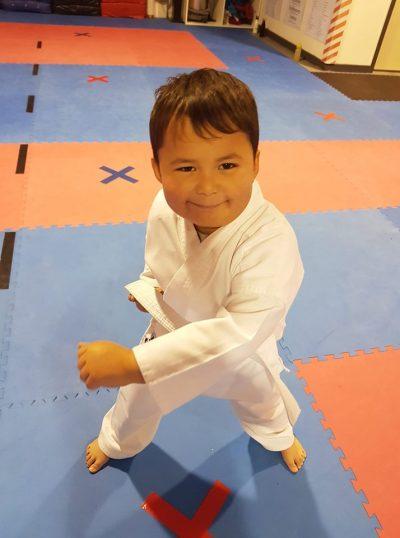 Active Karate Play