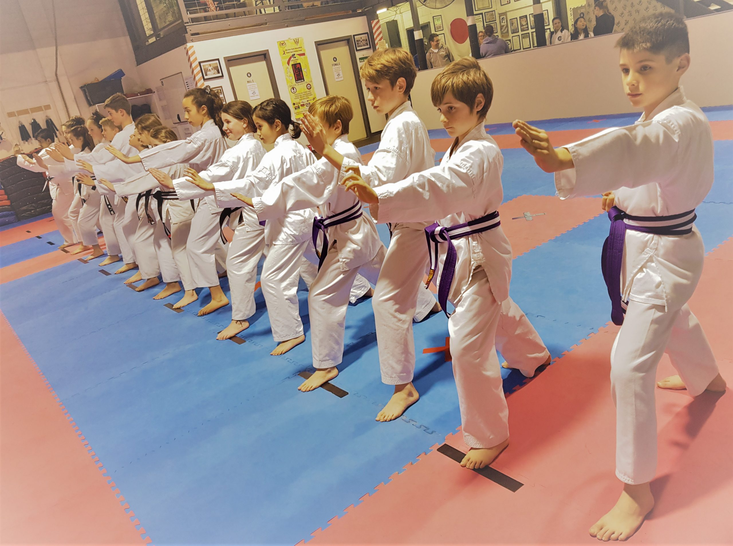 Junior Karate