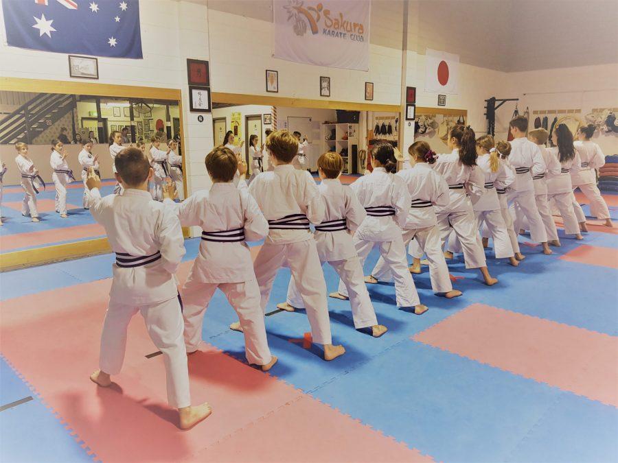 Our Karate Programs