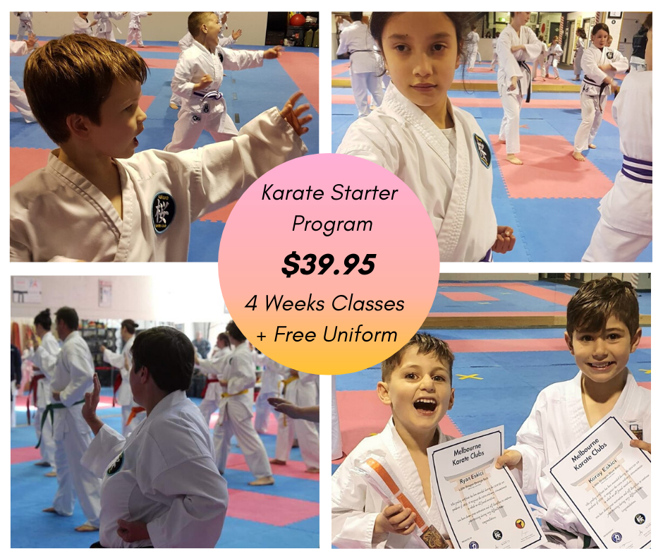 Karate Starter Program