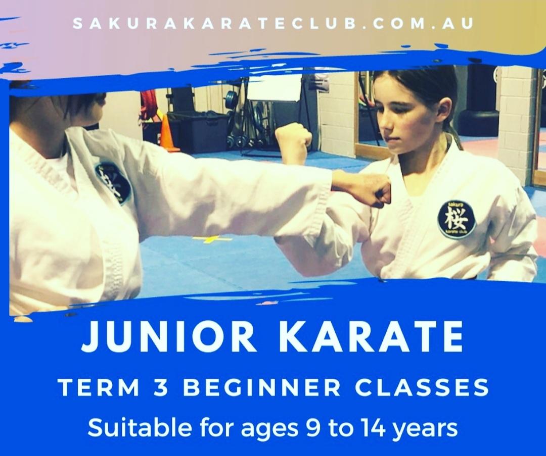 Junior Karate